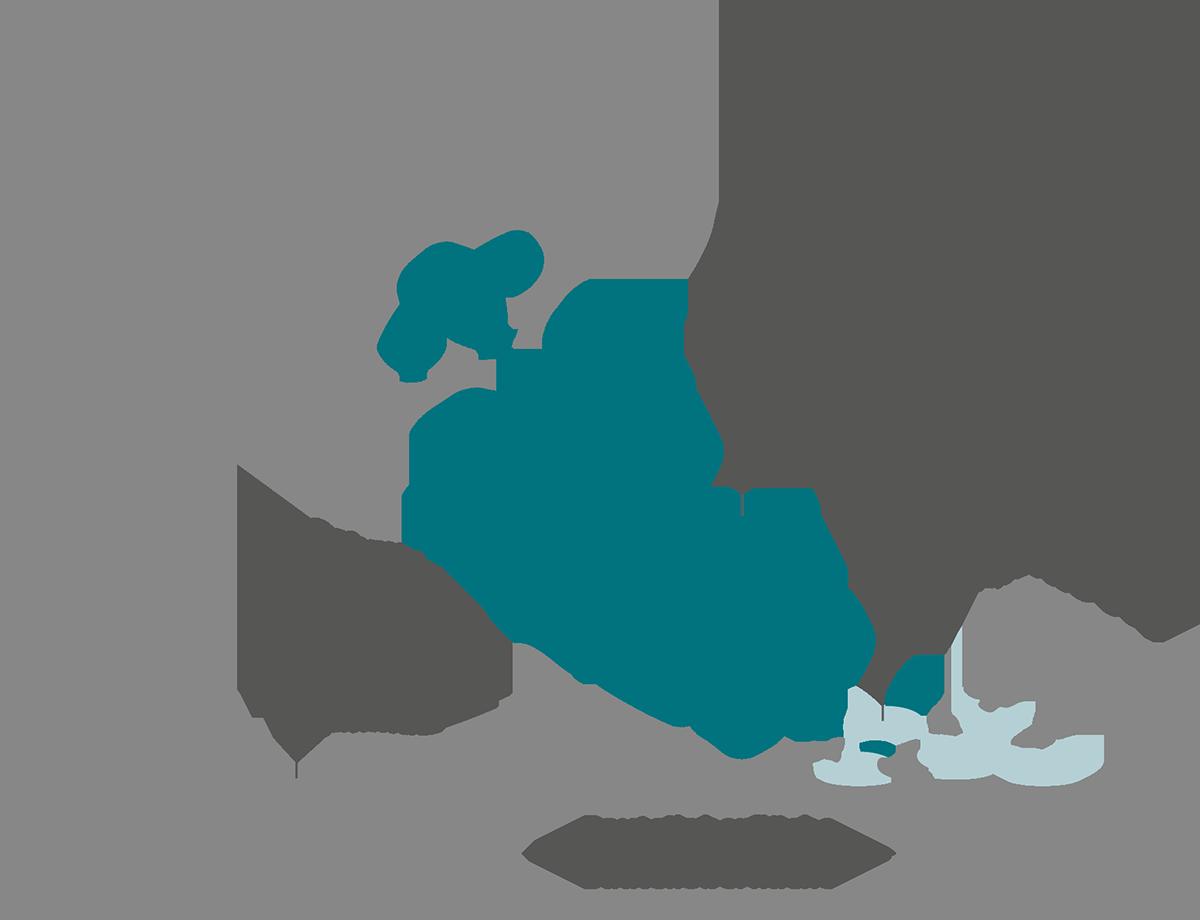 Schema Wirkungsweise CO2